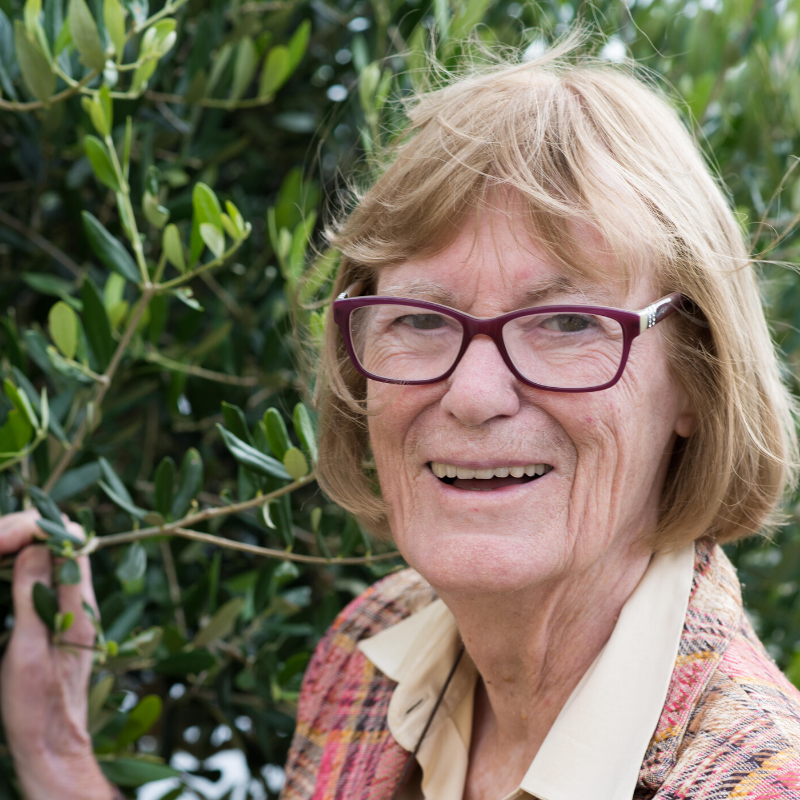 What Olive oil tasting expert judy ridgway has to say…. featured image